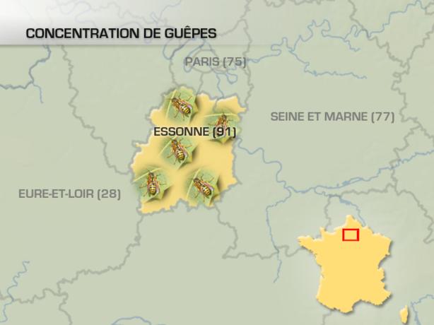 Actualités France - France - Faune/Flore