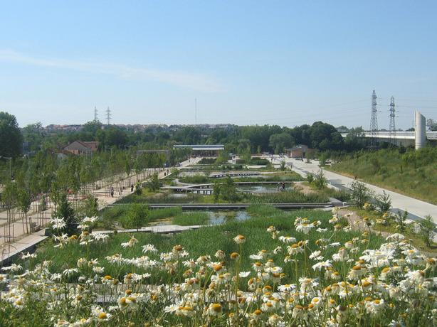 Actualit m t o nanterre d pollution de la ville par les plantes la c - Depollution par les plantes ...