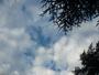 Fraicheur   matinale ,  avec   ciel  bleu  et  nuages.....
