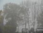 Du brouillard et du brouillard.