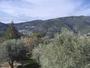 Vall�e du Paillon