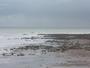 Semaine de grandes mar�es-Mers � mar�e basse