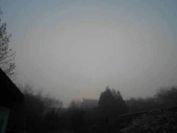 Reporters - Sarrewerden 67260 - Brouillard