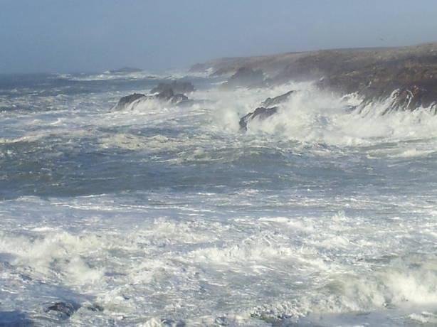 Reporters - Quiberon 56170 - Mer