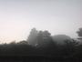 Brume matinale en ce jour de rentr�e