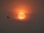 Lever de soleil sous la brume