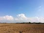 Formation de cumulonimbus dans un beau ciel bleu