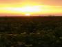Margaux lever de soleil dans les vignes