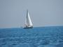 Un petit tour en mer.....