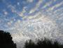 Beau ciel moutonn�
