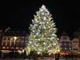 Le grand sapin de no�l � Strasbourg