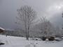 25 cm de neige