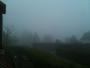 Brouillard dense