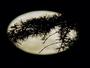La lune joue � cache-cache ce soir