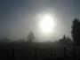 Brouillard & soleil