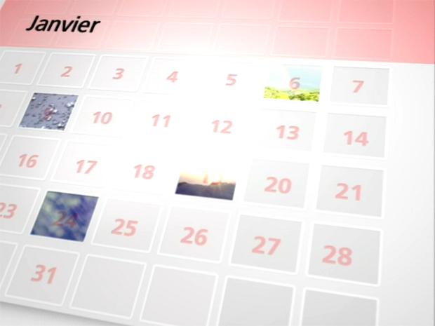 Vidéo Bilan du mois de Janvier 2010