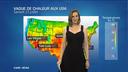Chaleur aux USA : incendies et troupeaux...