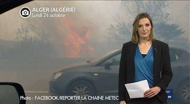 Vidéo Alger : chaleur extrême et incendies