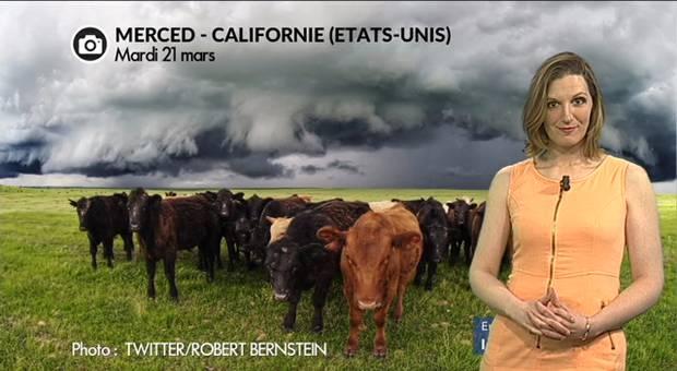Vidéo Violents orages et grêlons géants en Californie