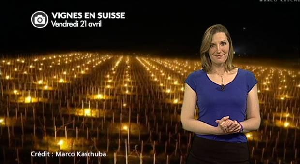 Vidéo Vignes : impressionnantes images de la lutte contre le gel