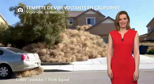 Vidéo Tempête de virevoltants aux Etats-Unis