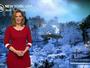 USA : 15 cm de neige à New York jeudi soir