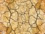 Pas assez de pluie cet hiver : vers un risque de sécheresse ?