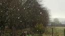 Giboul�e de neige