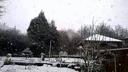 Neige sur l'Alsace bossue.
